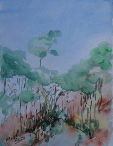 Taunus - Leśna perspektywa